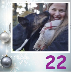 No 22 Pete Adventskalender